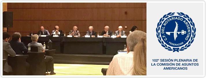 102º Sesión Plenaria de la Comisión de Asuntos Americanos