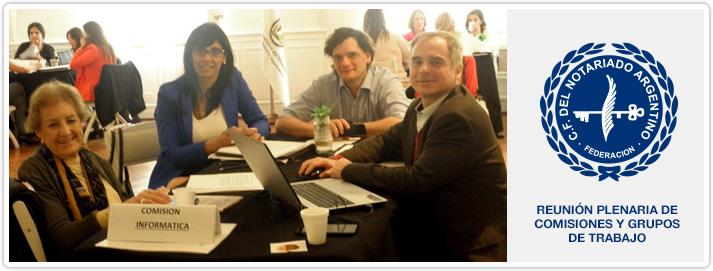 Reunión Plenaria de Comisiones y Grupos de Trabajo